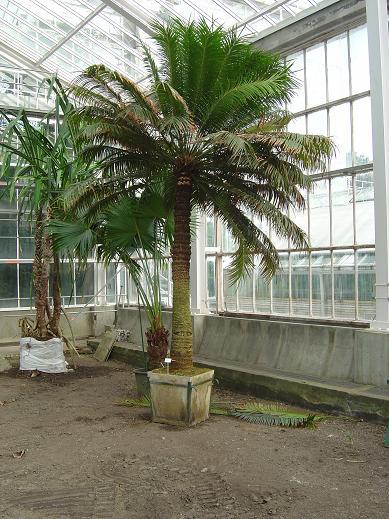 Jardin botanique national Meise