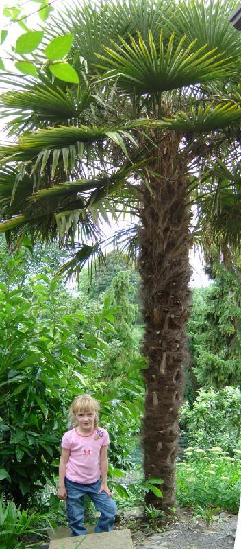 jardin exotique belgique ravijst Ecaussines
