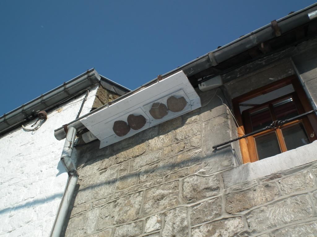 nichoirs hirondelles de fenêtre