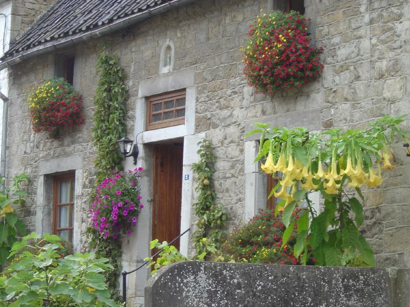 Jolies jardinières et façade fleurie: mode d'emploi